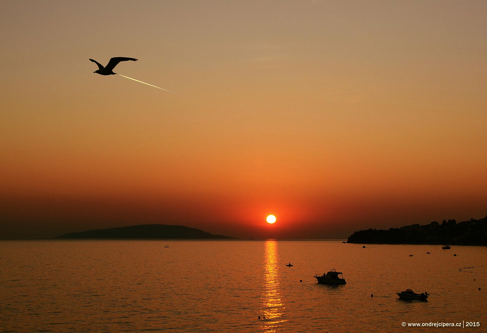 Tryskoracek při západu slunce, Chorvatsko, Brist