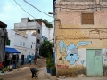 Maroko - Taghazout