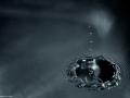 """""""Sláva se podobá kruhu na vodě, který se nepřestává šířit, až se samým šířením dočista ztratí."""" William Shakespeare"""